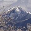あいづの春2013 その4 磐梯山