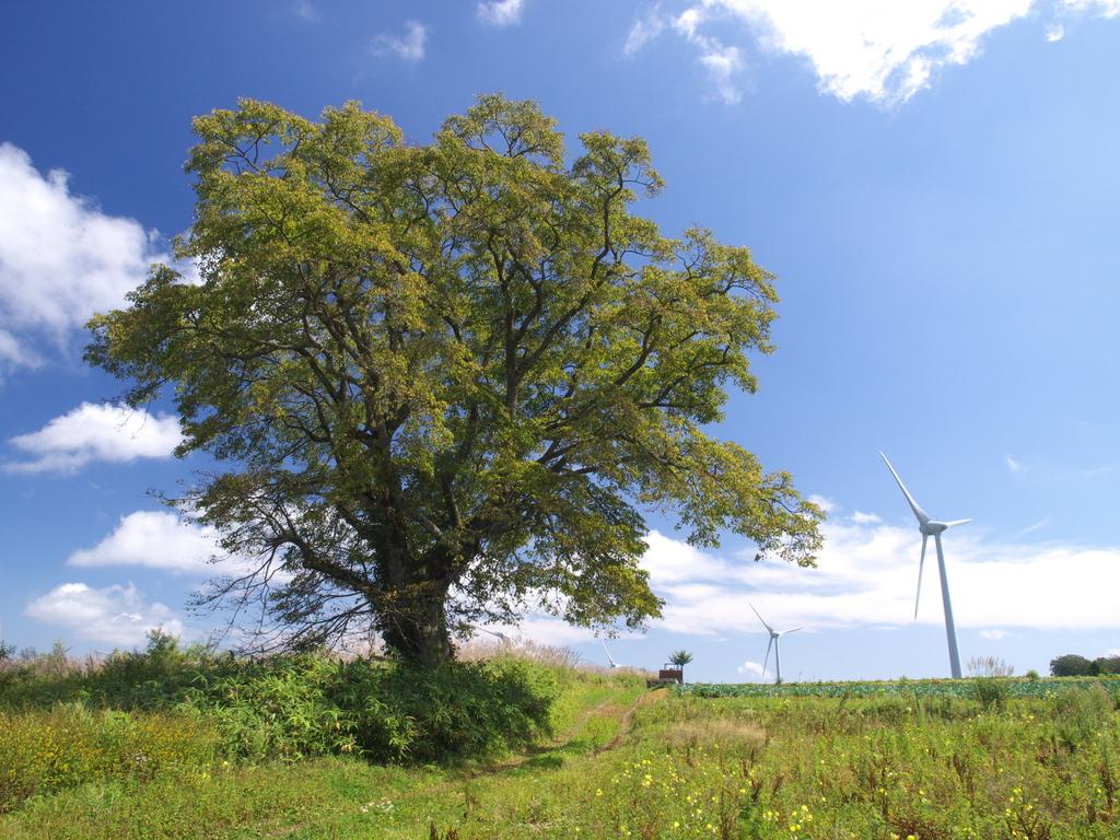 風の高原2009秋 ②