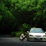 NIKON NIKON D200で撮影した乗り物(新緑の中で)の写真(画像)