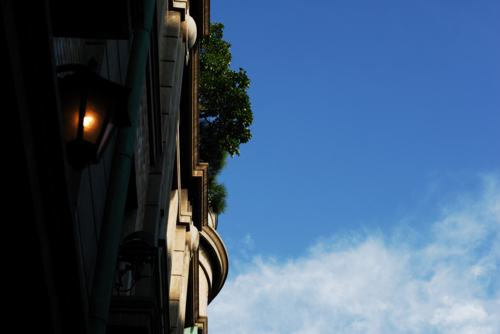 屋上に庭園を持つ建物