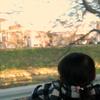 晩秋の車窓