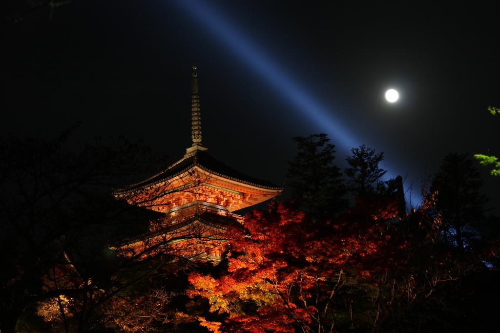 ライトアップと満月