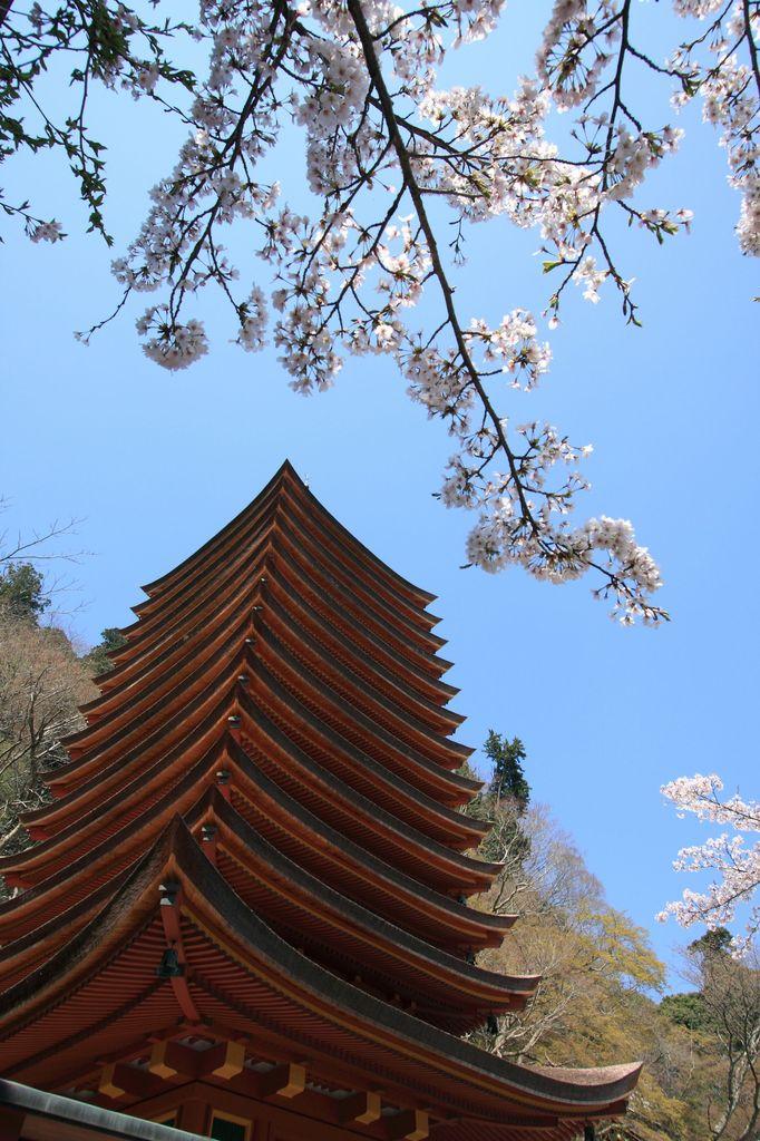 奈良・談山神社にて4