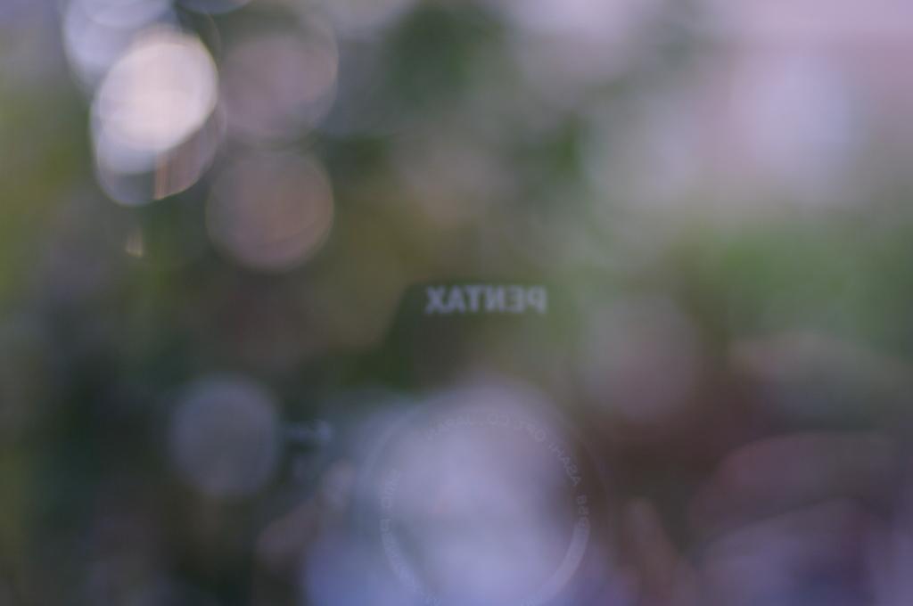 窓に写ったPenTAX ロゴ