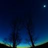 夜空を見上げよう