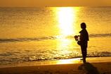 輝く海辺の傍で