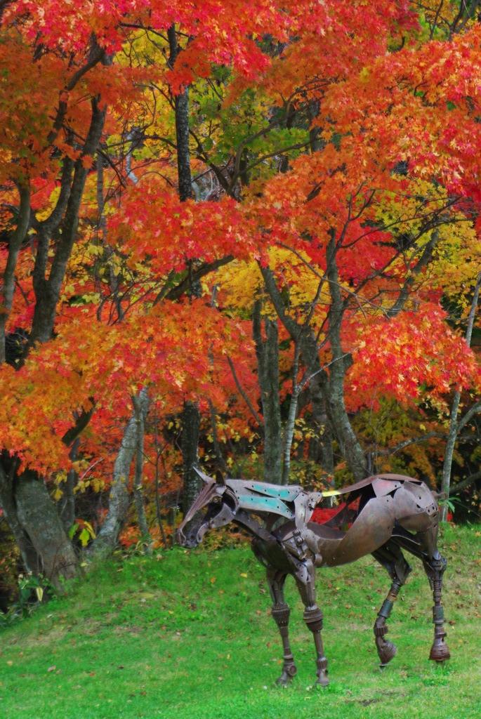 えこりん村の秋