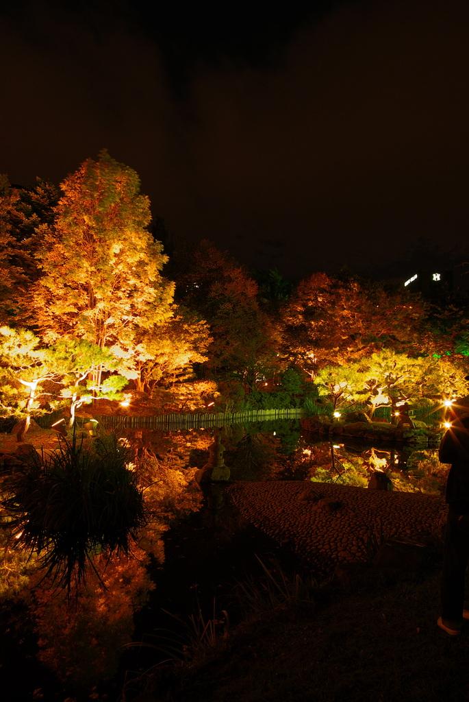 都会の庭園Ⅱ