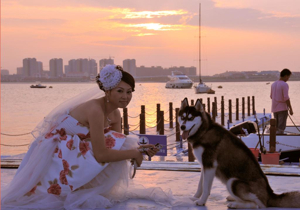 花嫁とワンちゃん