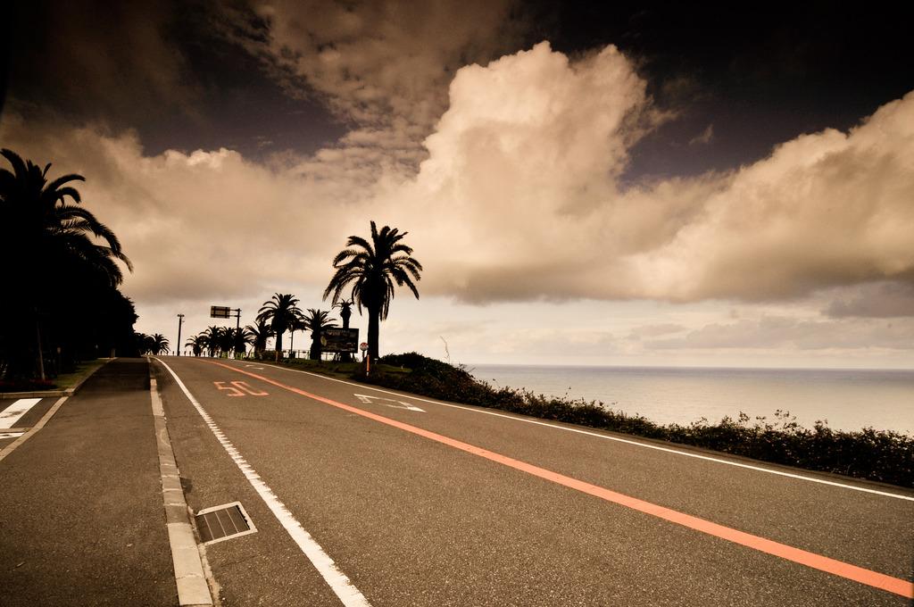 速度制限50km