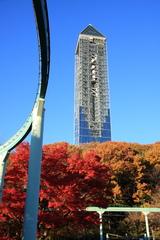 秋の東山スカイタワー