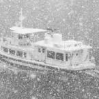snow noise