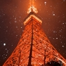 雪が降ってきたんで東京タワーを撮ってみた