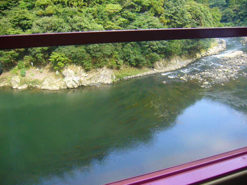 トロッコ列車より、保津川