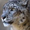 200904多摩動物公園_011