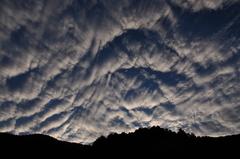 流れる雲を追いかけて...