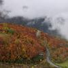 栂池高原の紅葉