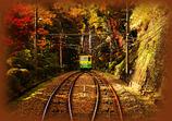 秋の巡り会い