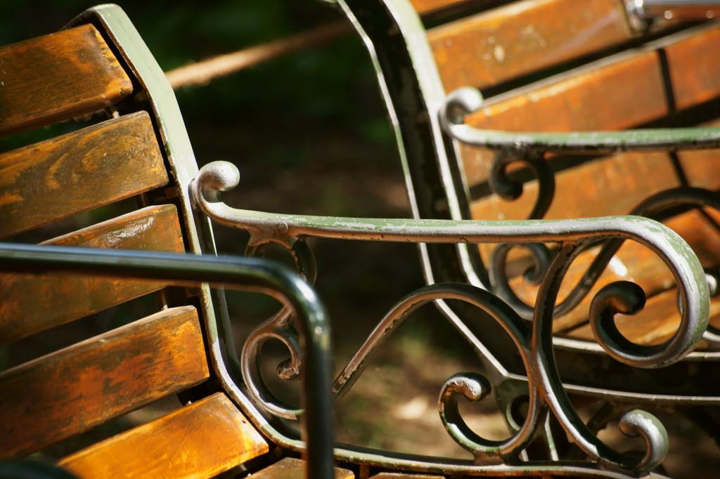 木陰のベンチ -2