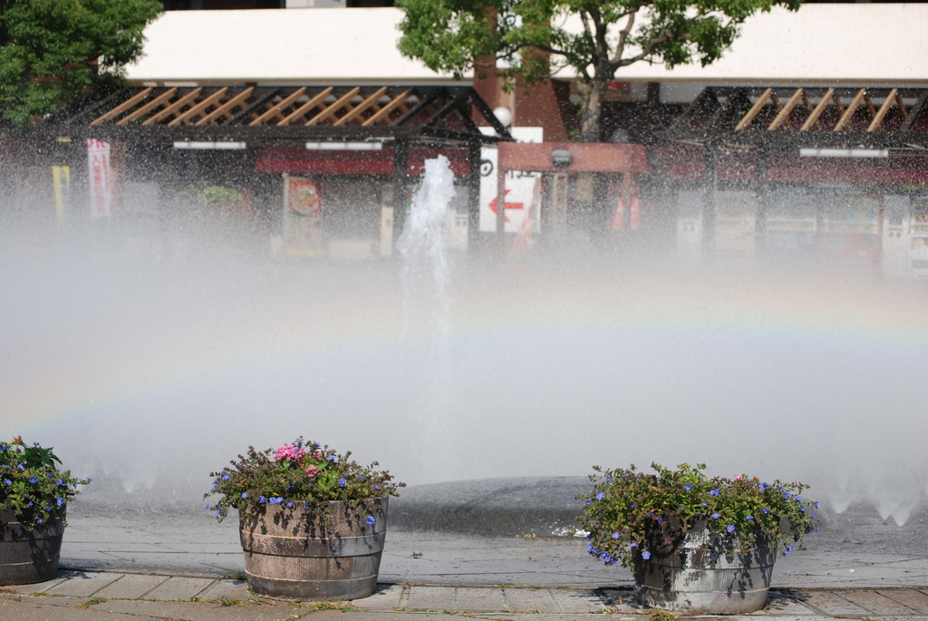 08.10.21葛西臨海公園_001