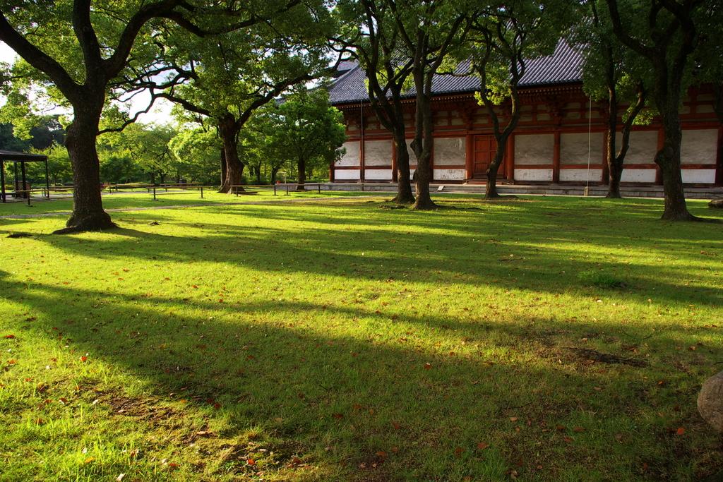 東寺 朝の境内
