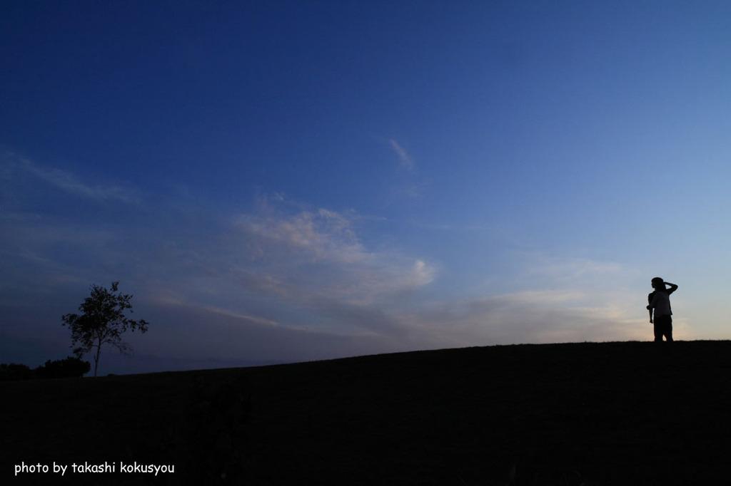 美瑛 四季彩の丘