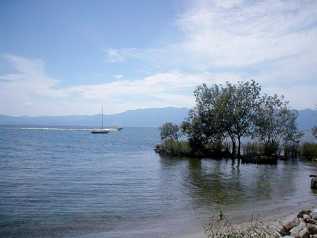 琵琶湖水が浜