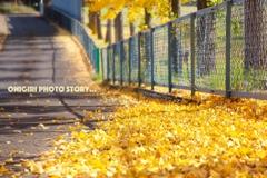 秋の色々2