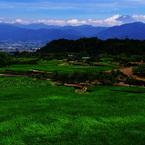 PENTAX PENTAX K10Dで撮影した風景(初夏の風)の写真(画像)