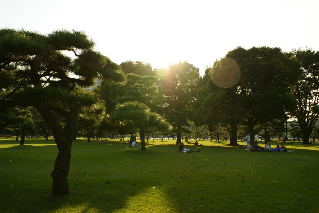 日比谷公園_皇居外苑_20081004_345