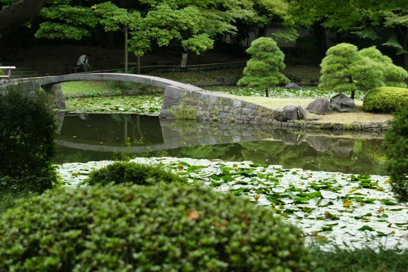 小石川後楽園_20080927_396