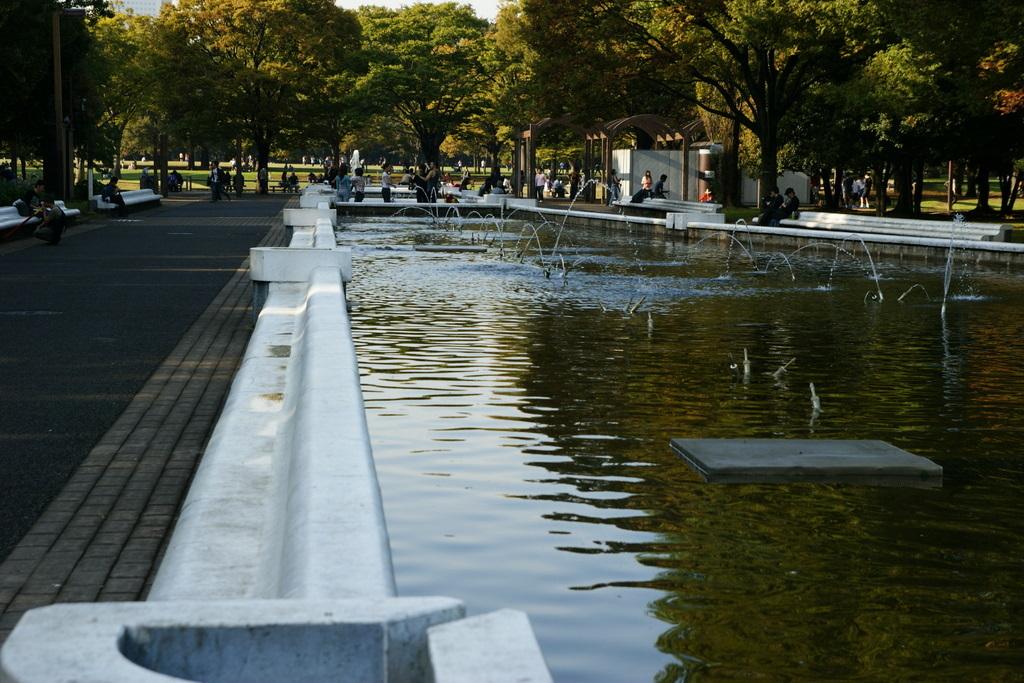 代々木公園_20081011_128