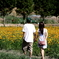 花畑でデート