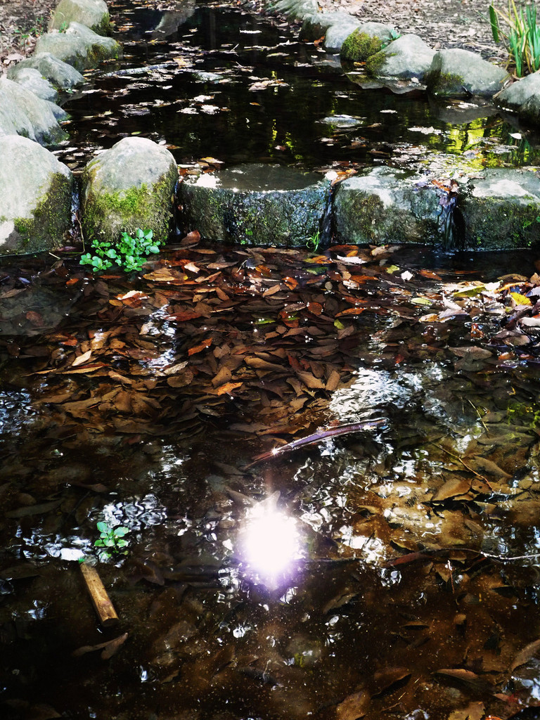Clear-stream