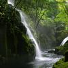 森の力、水の恵み 2