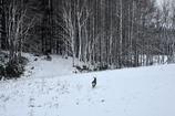 冬への歩み