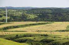 丘の広がり