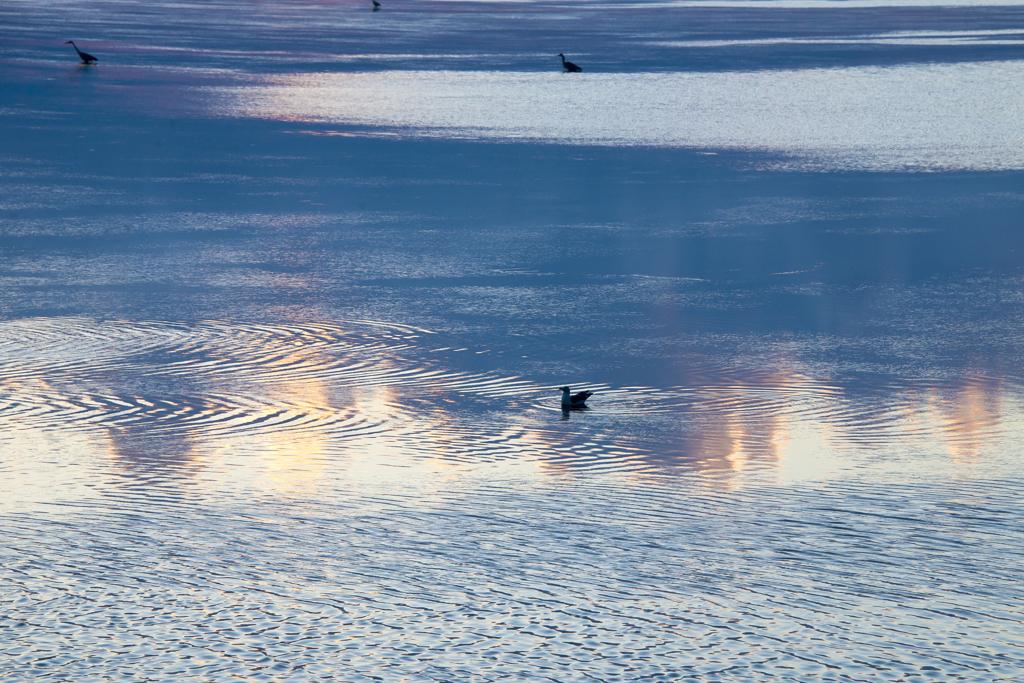 夕日を映す浅瀬