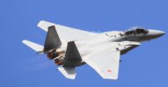 2017 岐阜基地航空祭 F15