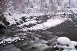 裾花川雪景色