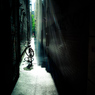 路地の光と影