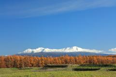 蒼天白峰黄葉なる景色