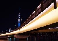 SONY SLT-A37で撮影した(桜橋)の写真(画像)