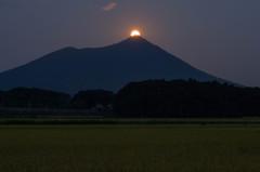 【参考】 パール紫峰