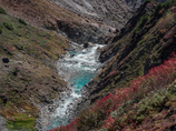 称名川の彩