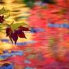 津軽の秋1