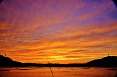 夕映えの釣り筏