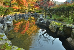 小池に映る秋の小さな波紋