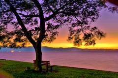 夕暮れの「あのベンチ」