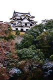 冬の彦根城天守閣